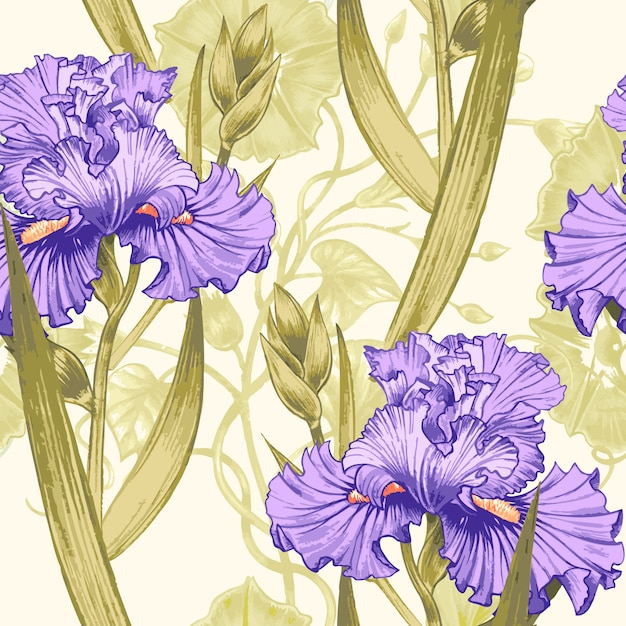 Seamless  pattern with flowers irises. Premium Vector