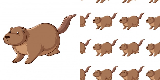 Seamless pattern with guinea pig Free Vector