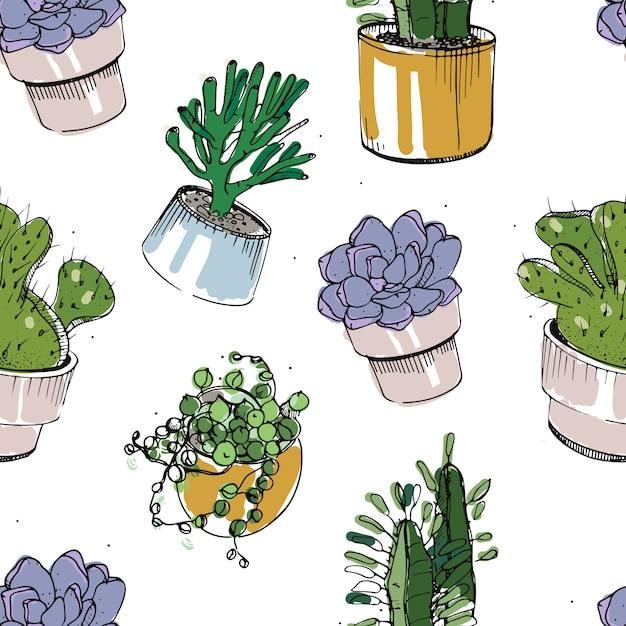 Бесшовные с рисованной суккулентов и кактусов в горшках. красочные иллюстрации на белом фоне. Premium векторы