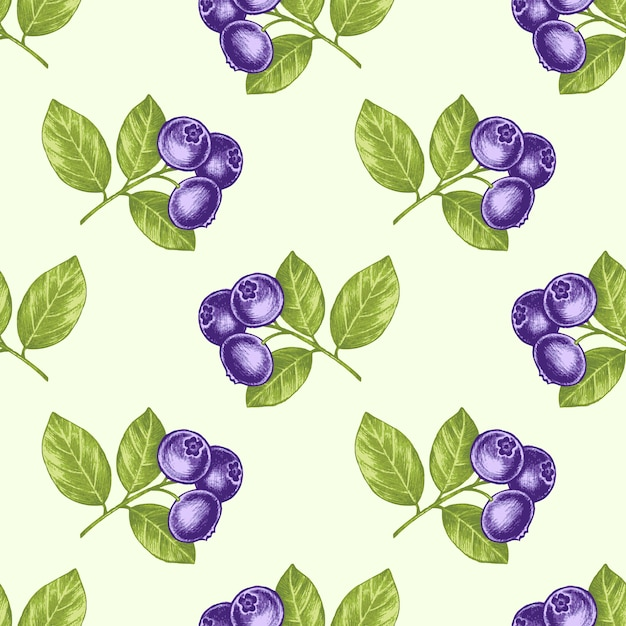 Seamless pattern with medical plants Premium Vector