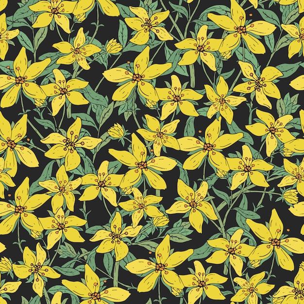 Безшовная картина с заводом цветения st. john's wort медицинским ботаническим. рисованной красочные текстуры в черном фоне. Premium векторы