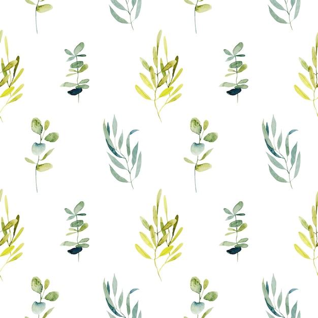 Бесшовный фон с акварельными ветками эвкалипта и зелеными растениями Premium векторы