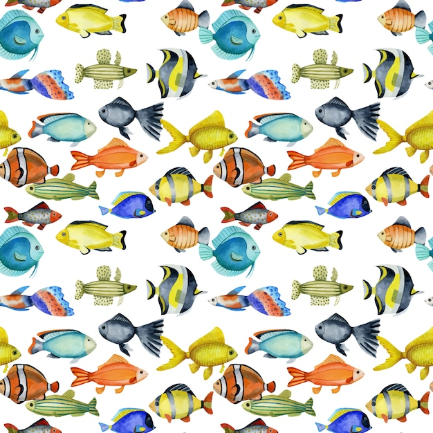 Seamless pattern with watercolor oceanic tropical exotic fishes Premium Vector