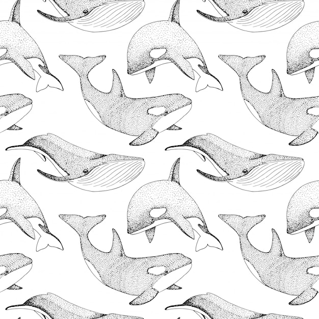 Seamless pattern with whales, orcs and other fishes. Premium Vector