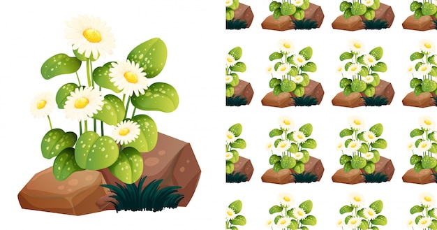 Seamless pattern with white flowers on rocks Free Vector
