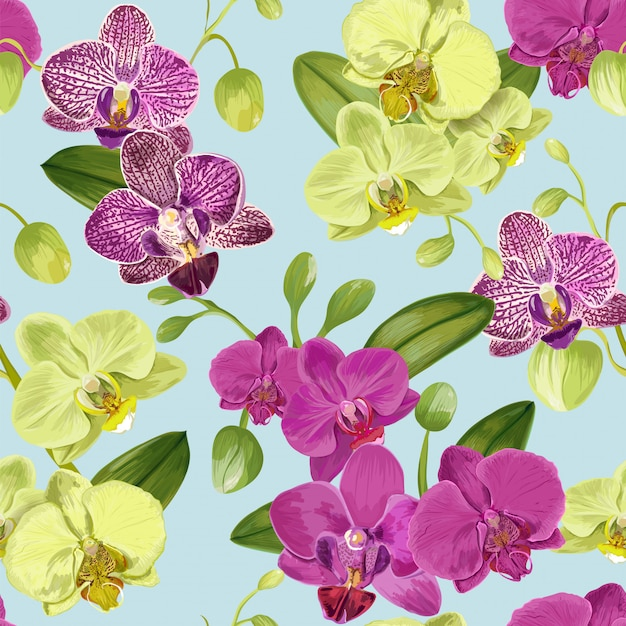 Seamless tropical pattern with orchid flowers. Premium Vector