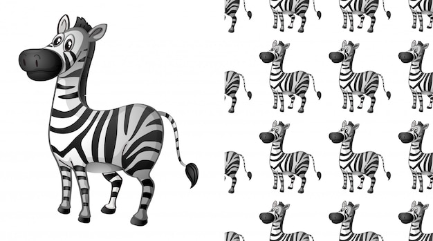 Seamless zebra animal pattern cartoon Free Vector