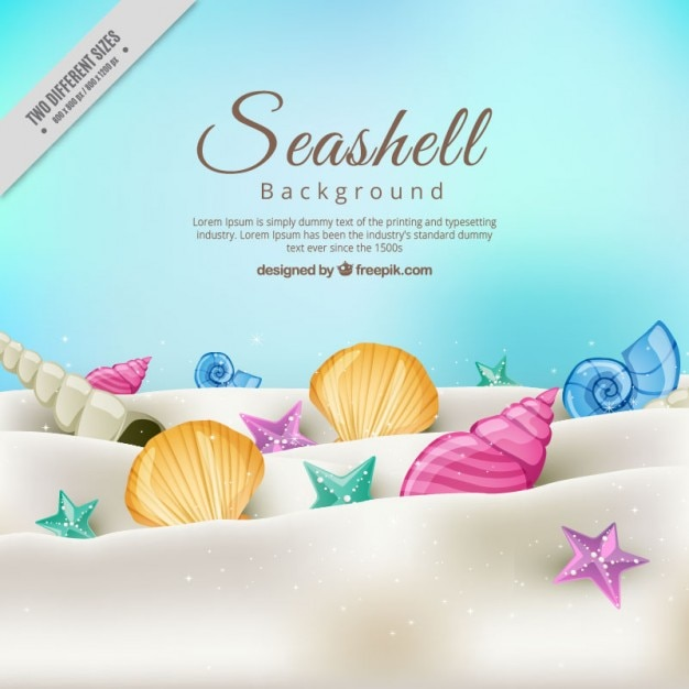 Seashell background on the sand Free Vector
