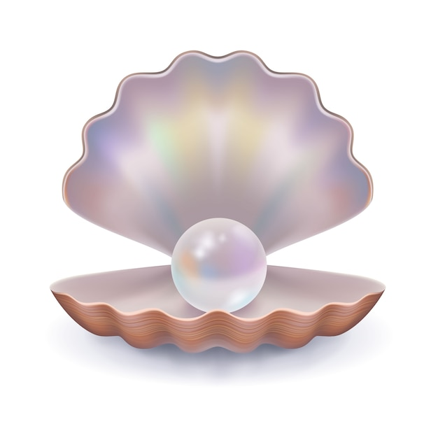 Seashell with a pearl Free Vector