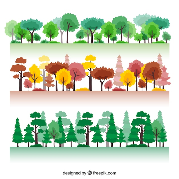Seasonal forest Free Vector