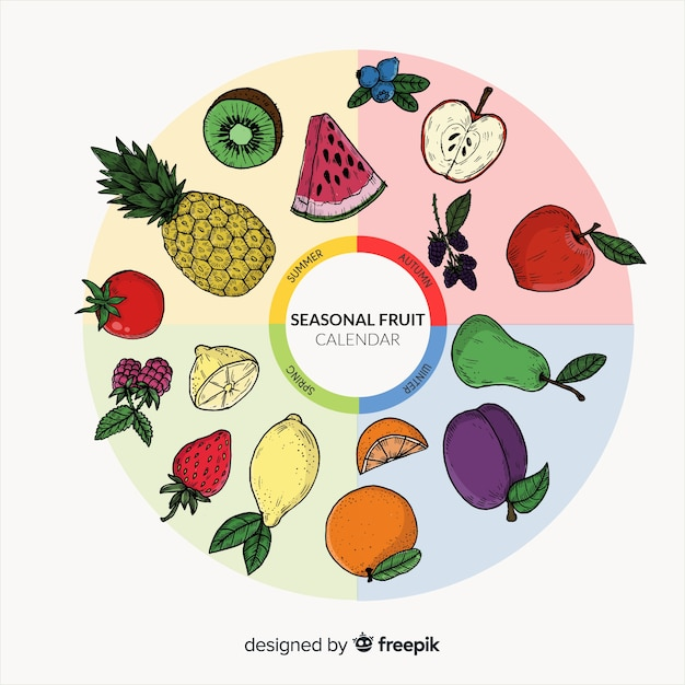 Seasonal fruits and vegetables calendar Free Vector