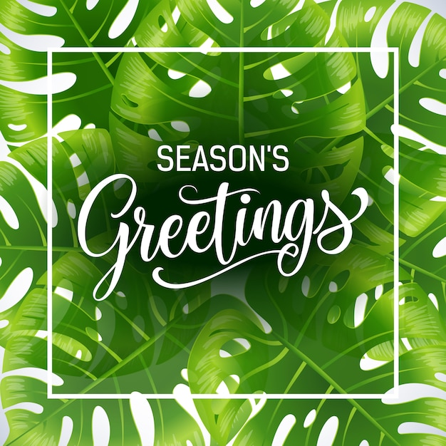 Seasons greetings poster template with tropical\ leaves on white background.