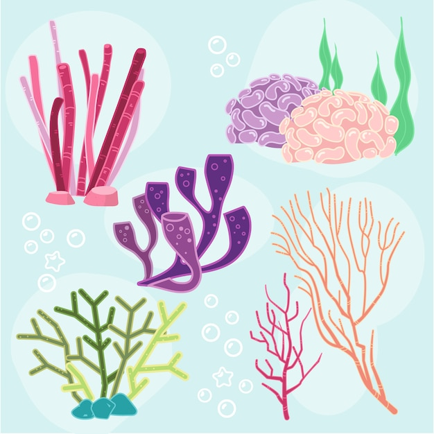 Collezione di elementi di alghe Vettore gratuito