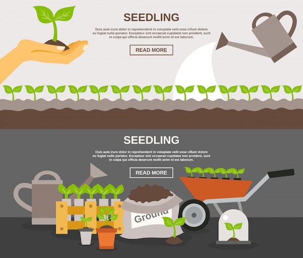 Seedling banner set Free Vector
