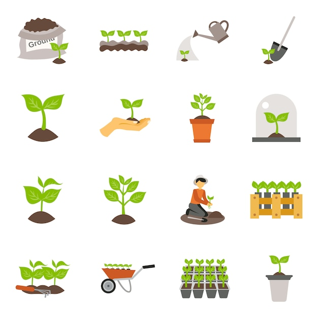 Seedling flat icons set Free Vector