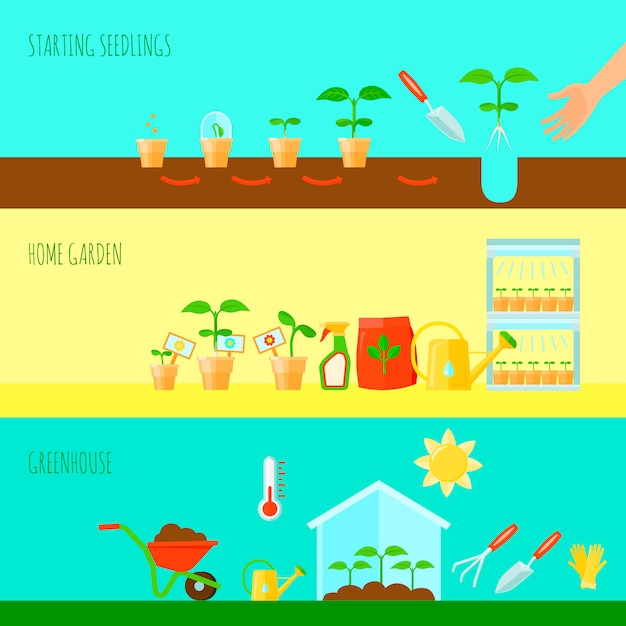 Seedling horizontal banners set with greenhouse symbols flat isolated vector illustration Free Vector
