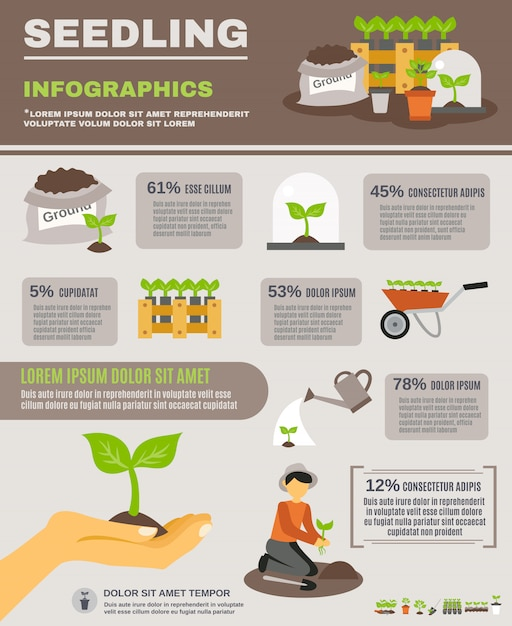Seedling infographics set Free Vector