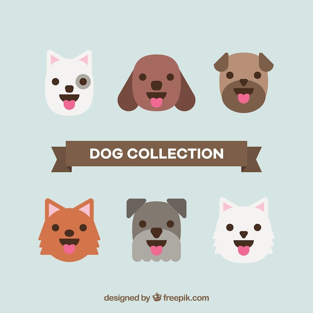 Selection of cute dogs in flat design