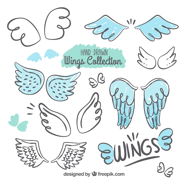 Selection of decorative wings with blue details Free Vector