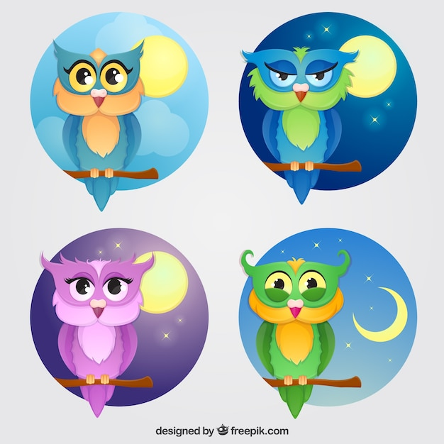 Selection of four colored owls with different backgrounds Free Vector