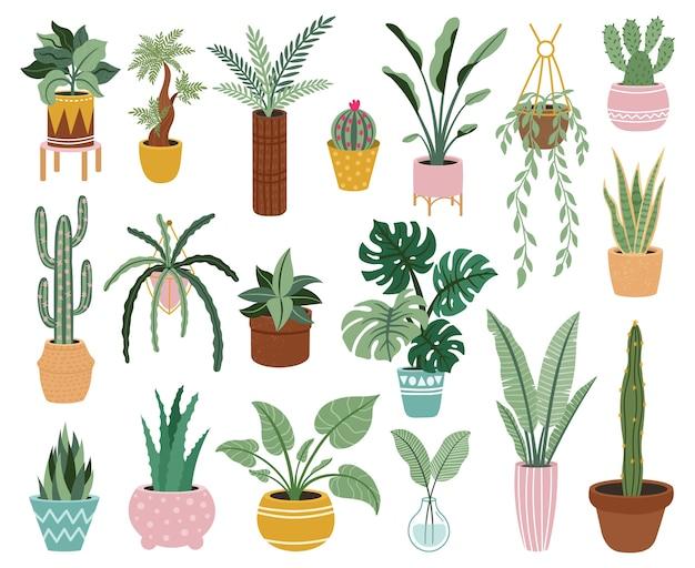 Подбор растений в горшках Premium векторы