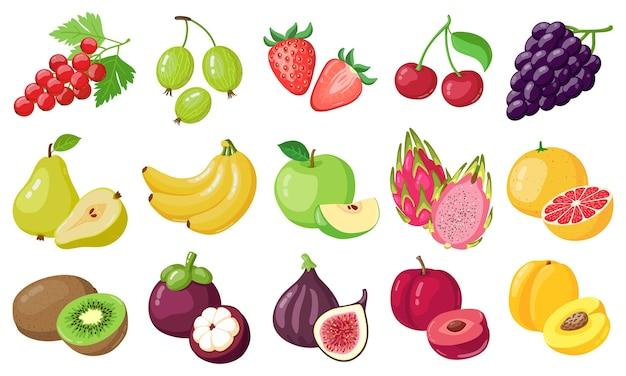 さまざまな果物の選択 Premiumベクター