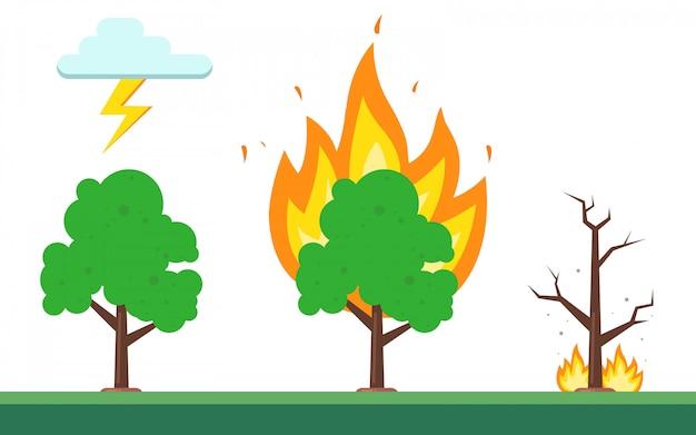 森林火災のシーケンス Premiumベクター