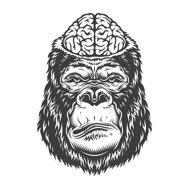 Grave gorilla in stile monocromatico Vettore gratuito