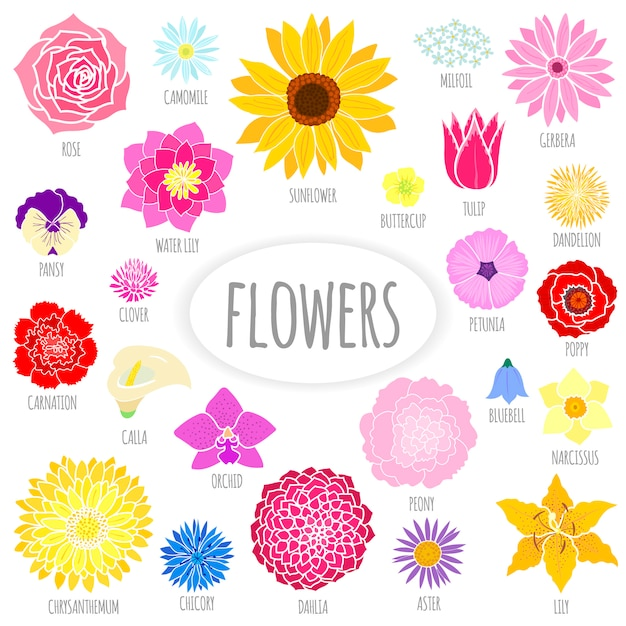 Set of abstract flat flowers Premium Vector
