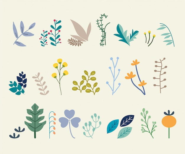 Set of abstract leaves Premium Vector