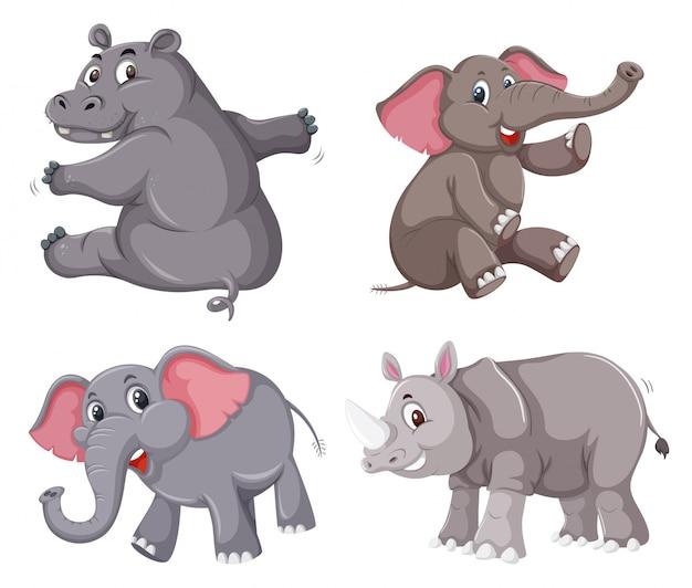 Set of animal character Premium Vector