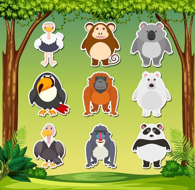 Set of animal sticker Free Vector