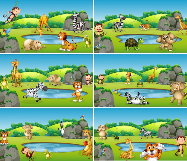 Set of animal in wild Free Vector