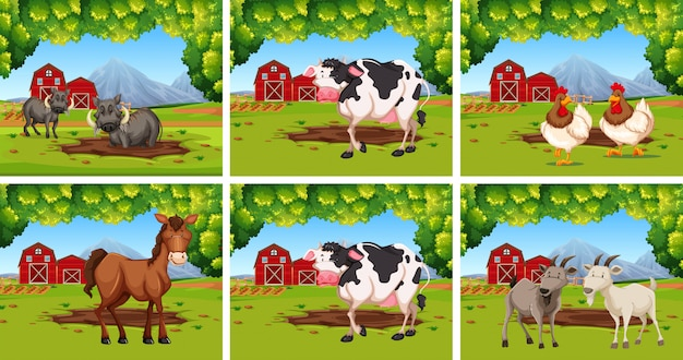 Set of animals on farms Free Vector