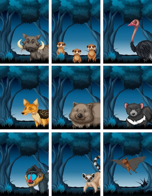 Set of animals in nature Free Vector