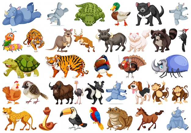 Set of animals sets Free Vector