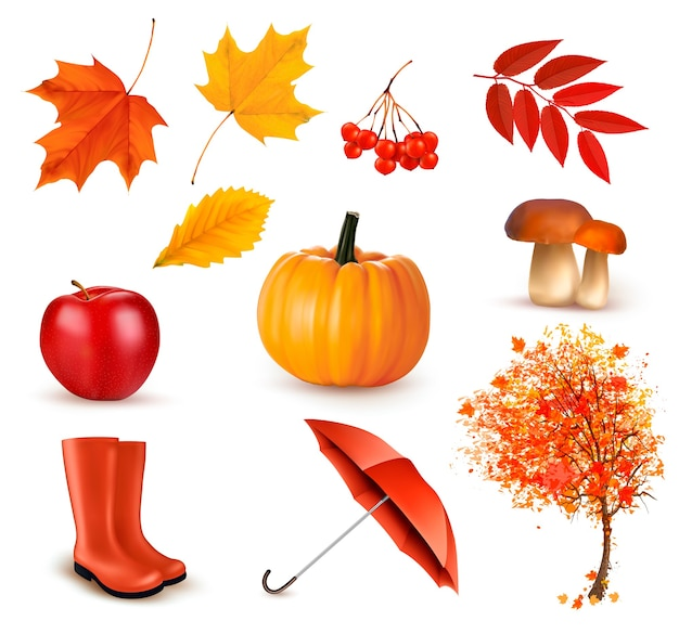 Set of autumn-themed objects. Premium Vector