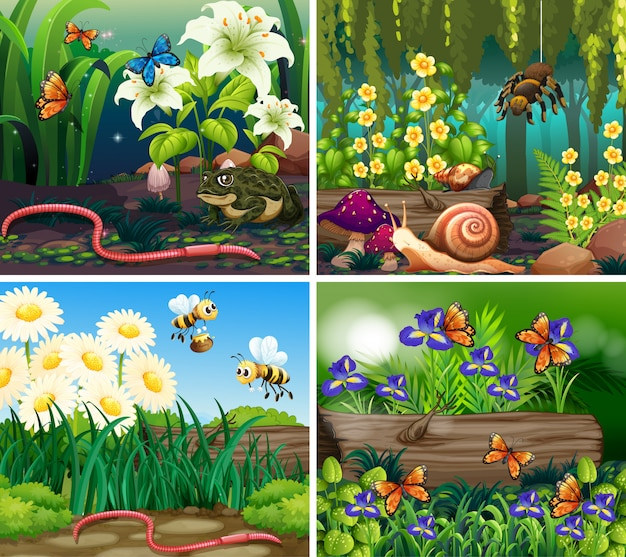 Set of background scene with flowers and insects in the woods Free Vector