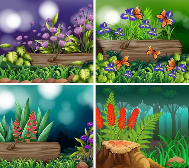 Set of background scene with nature theme Premium Vector