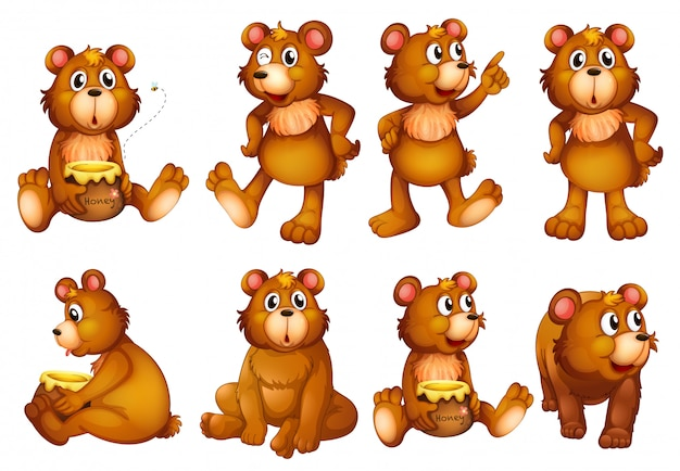 Set of bears isolated on white Free Vector