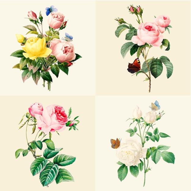 Set of beautiful blooming roses Free Vector