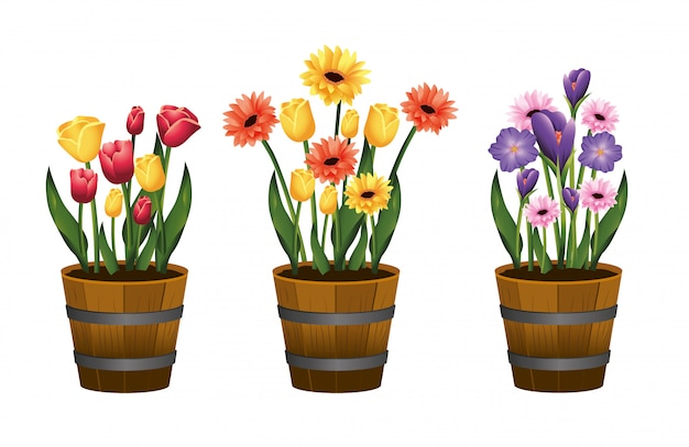 Set beauty flowers plants with leaves inside flowerpot Premium Vector