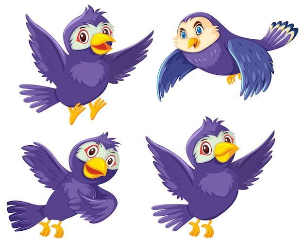 A set of bird on white background Premium Vector
