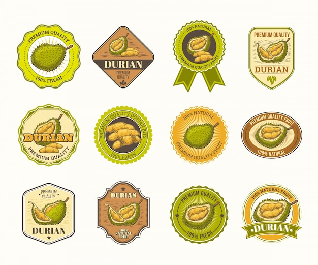 Set of black and white vector badges, stickers, high quality signs, with durian fruit Free Vector