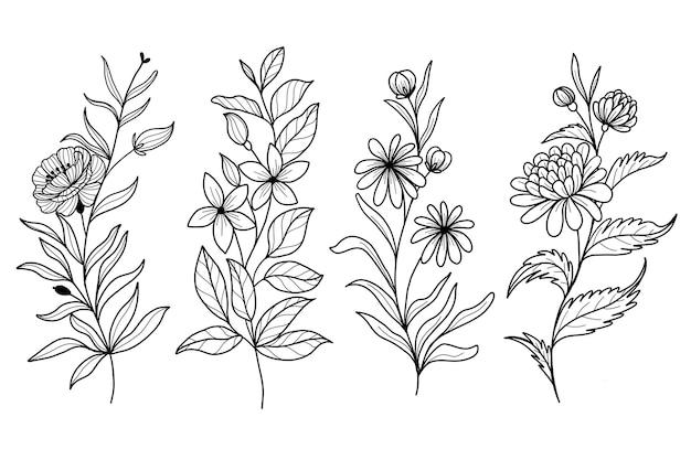 Set of botanical leaf doodle wildflower line art Premium Vector
