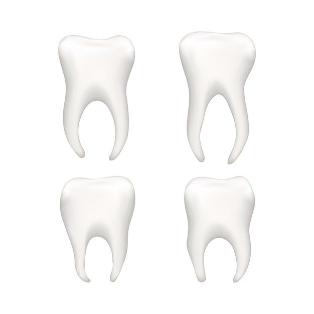 Set of bright realistic human teeths  on white Premium Vector