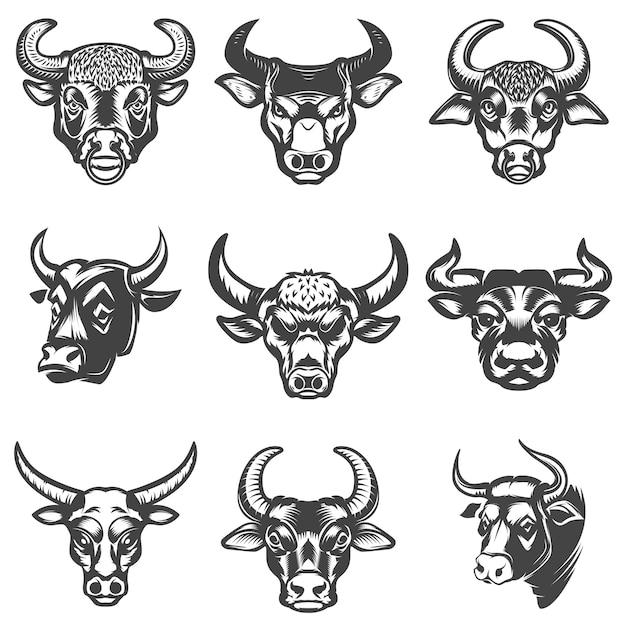 Set of bull heads  on white background.  elements for logo, label, emblem, sign.  illustration Premium Vector