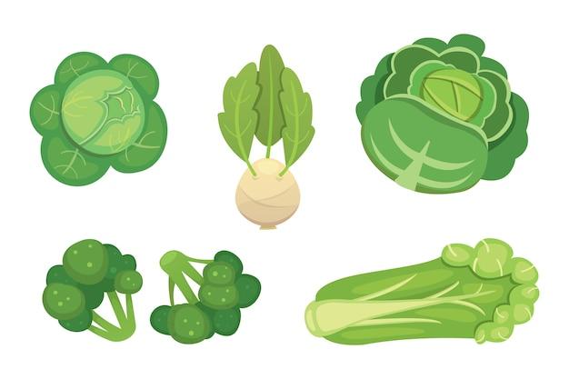 キャベツとレタスをセット。野菜のグリーンブロッコリー、コールラビ、その他のキャベツ。 Premiumベクター