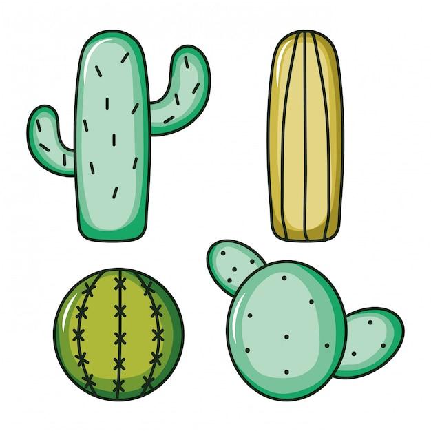 Set of cactus plants nature Premium Vector