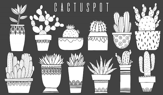 Set cactus pot and succulent in sketch style. Premium Vector